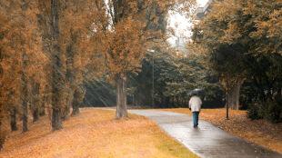 Przed nami deszczowa jesień i mroźna zima