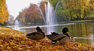 Jesień w obiektywach Reporterów 24 (Kontakt Meteo)